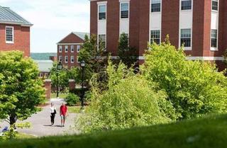 جامعة نيو برونزويك