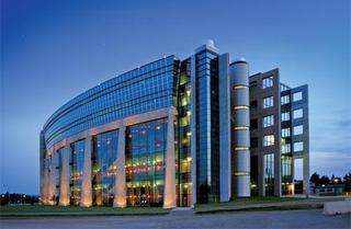 جامعة ليكهيد